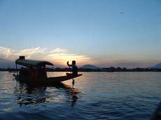 Шикара на озере Дал, Шри Нагар, Кашмир